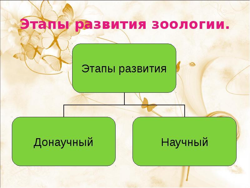 Зоология — википедия с видео // wiki 2