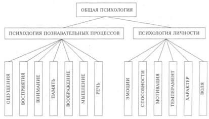 Что такое психология своими словами кратко. психология — это наука о человеке и личности