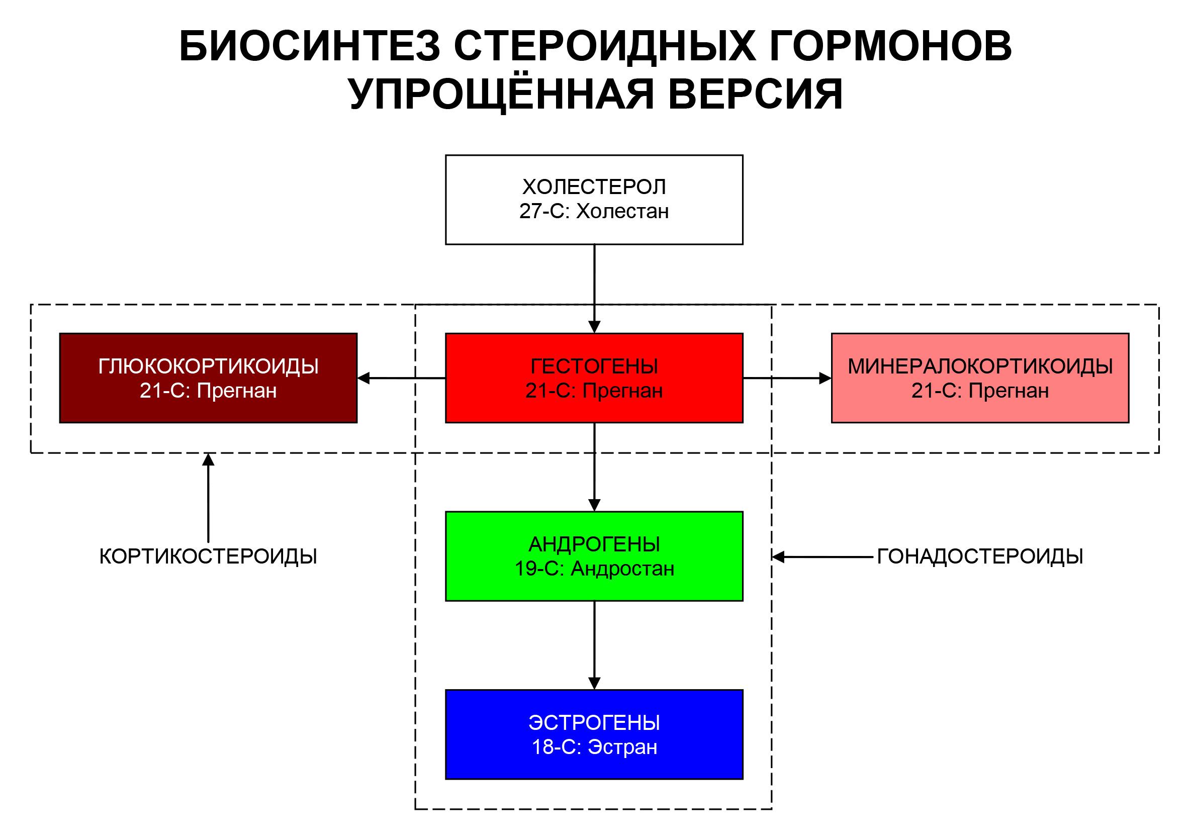Ментальность — что это такое, признаки ментального расстройства здоровья   ktonanovenkogo.ru