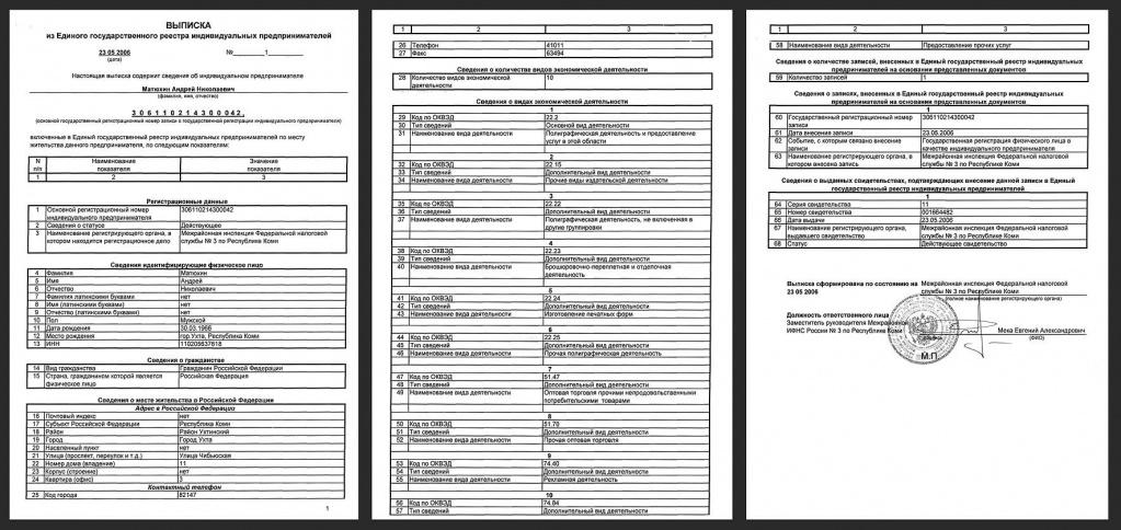 Что такое егрюл: понятие, документы, получение выписки из него