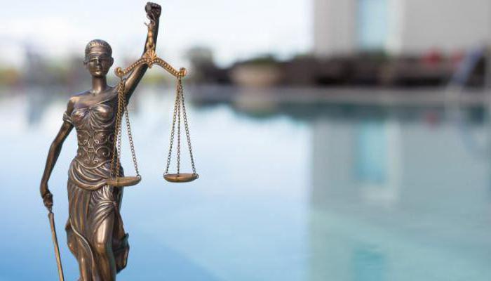 Список профессий в юридической сфере