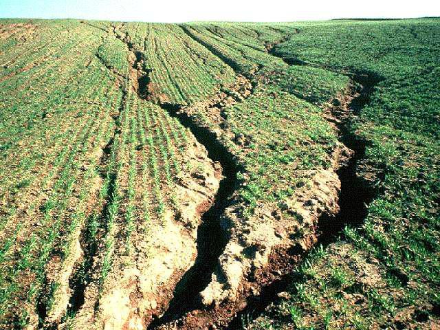 Виды эрозии почвы и причины ее возникновения