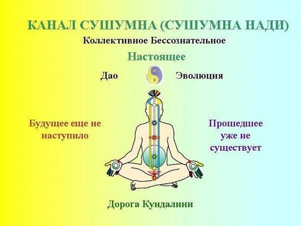 Кундалини йога   школа кундалини йоги «венера» кундалини йога   школа кундалини йоги «венера»