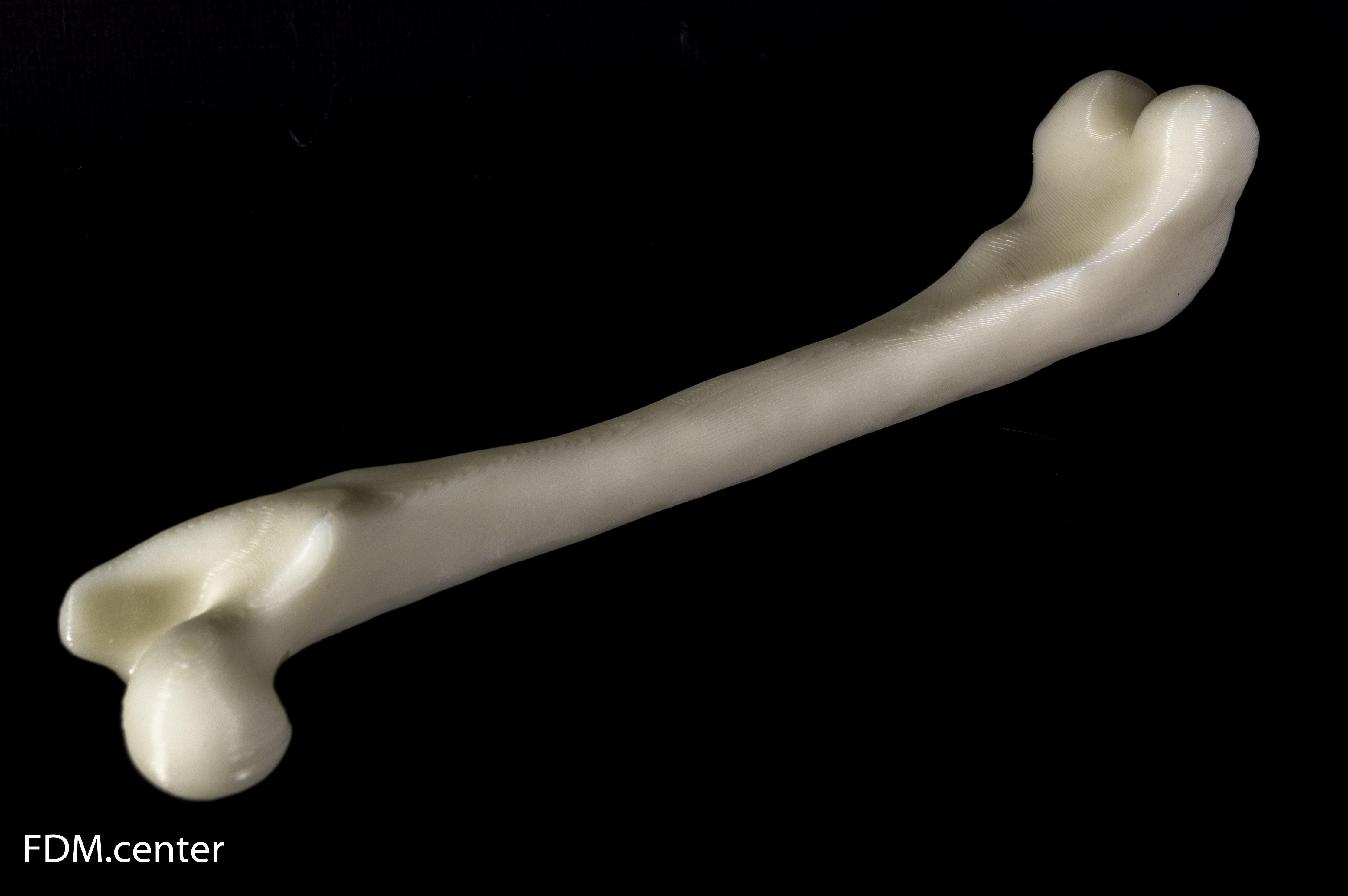 Кость что это? значение слова кость