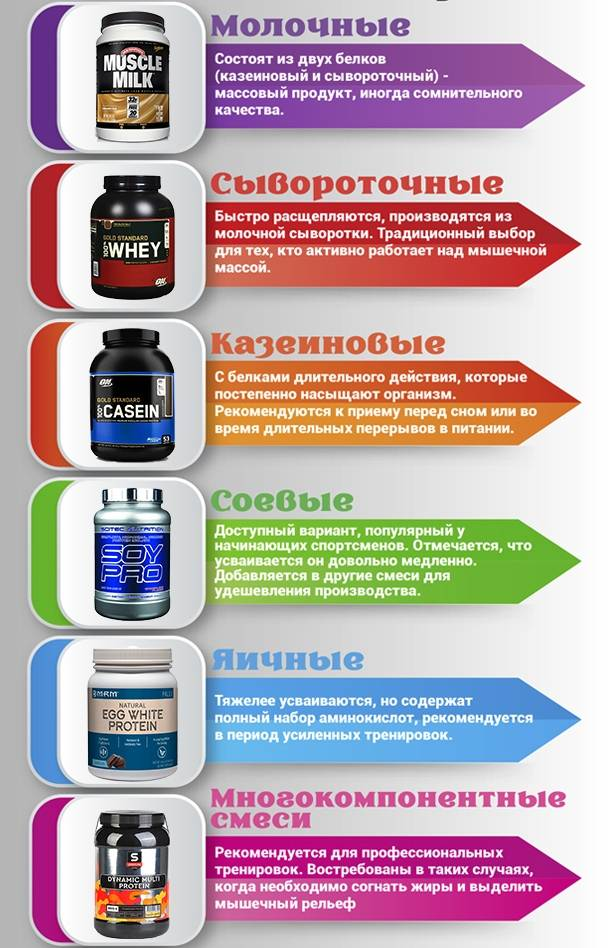 Что такое протеин / белковые добавки в спортивном питании