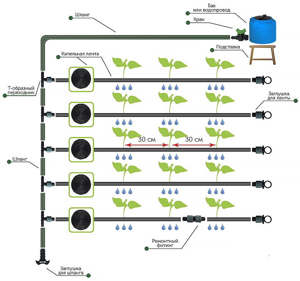 Устройство капельного полива в теплице (фото & видео)+отзывы