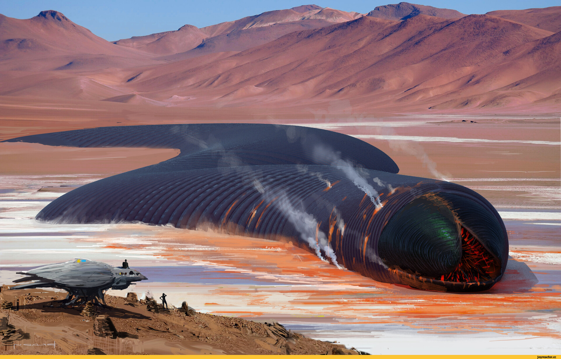 Что такое дюна: месторасположение и скрытая опасность