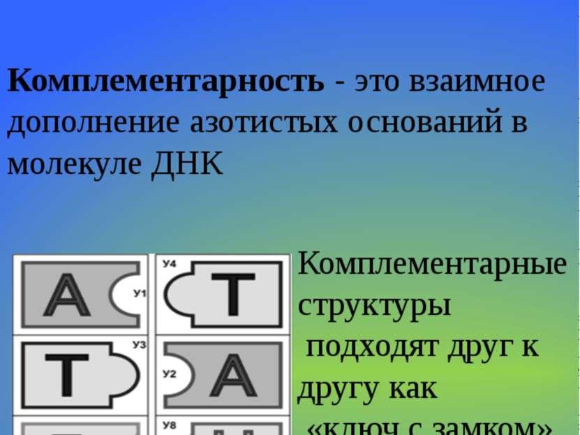 Комплементарность (биология) — википедия