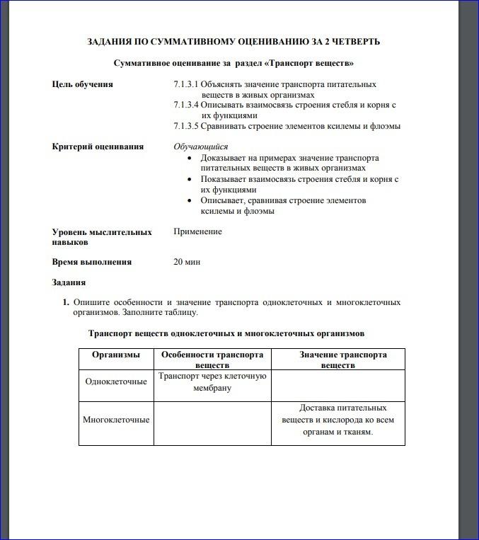 Ксилема - xylem