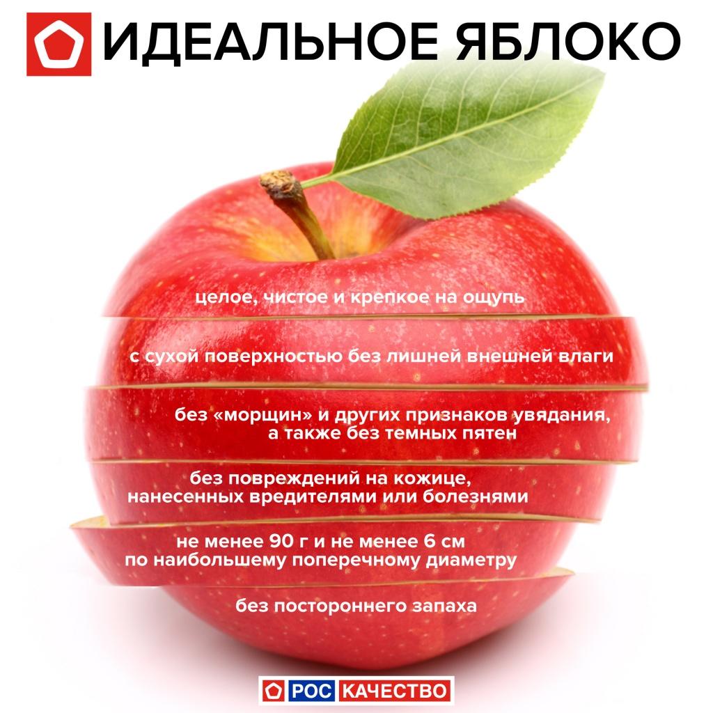 Яблоко – это фрукт, ягода или овощ