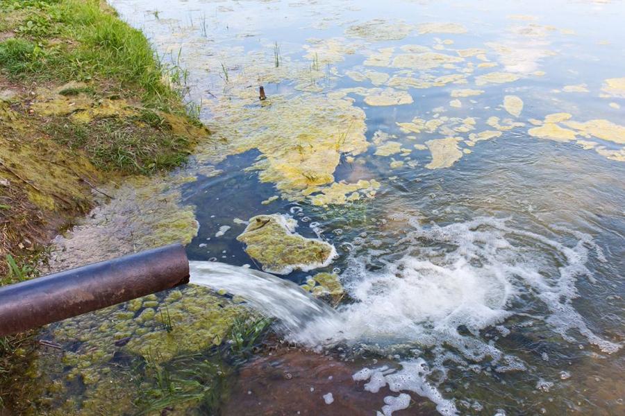 Экологический кризис: что это такое, признаки и примеры, пути выхода