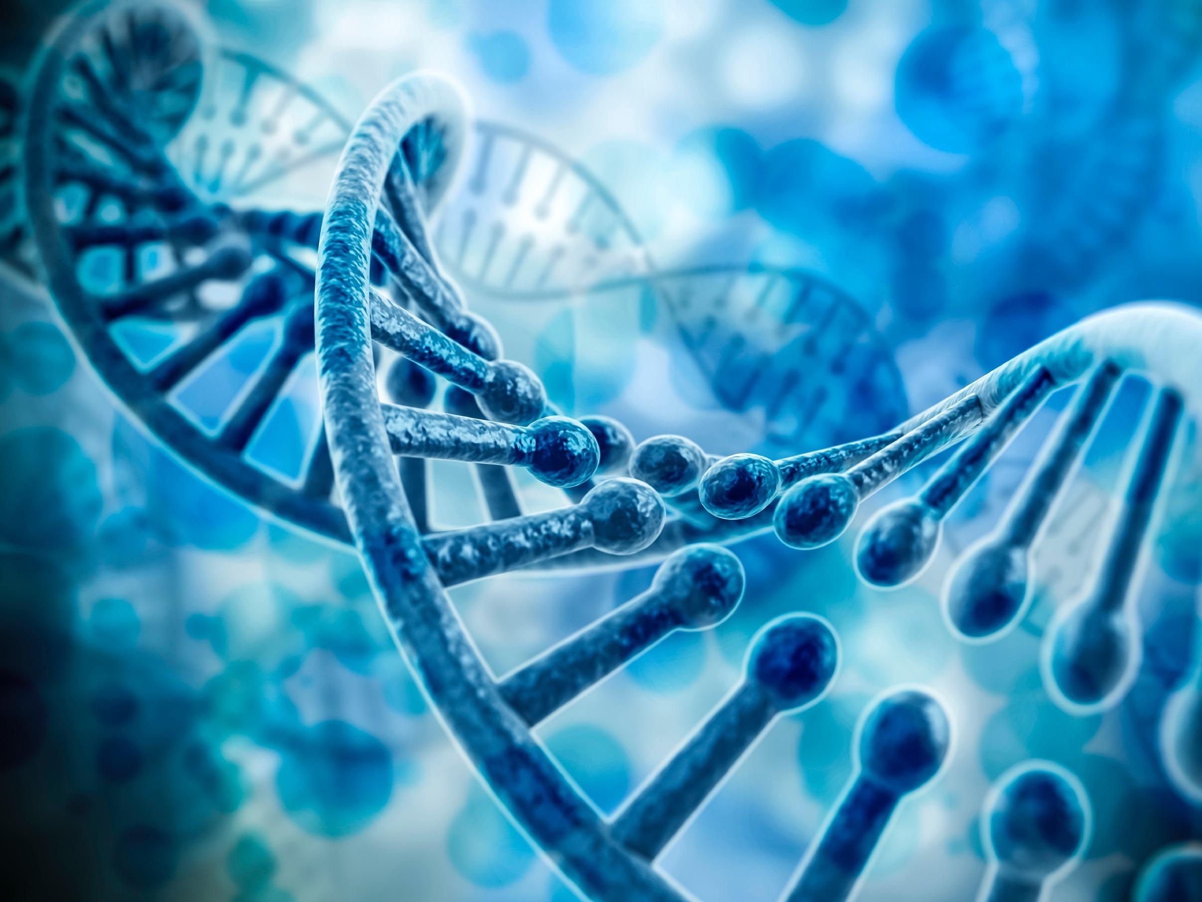 Гены: что это такое и как они работают. что такое хромосомы?