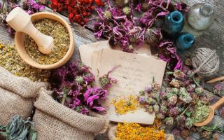 Кахексия - симптомы и лечение истощения, фото и видео