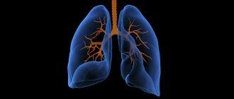 Альвеолит легких – симптомы, причины, методы лечения