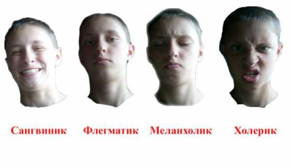 Холерик: тип темперамента в психологии, чем характеризуется такой человек?