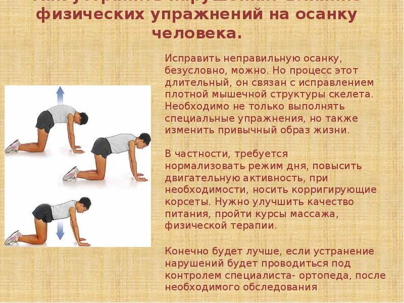 Физические упражнения — википедия. что такое физические упражнения