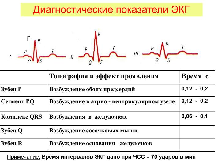 Какие показатели экг считаются нормальными: расшифровка результатов обследования
