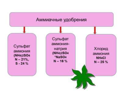 Применение в медицине препарата сульфат натрия