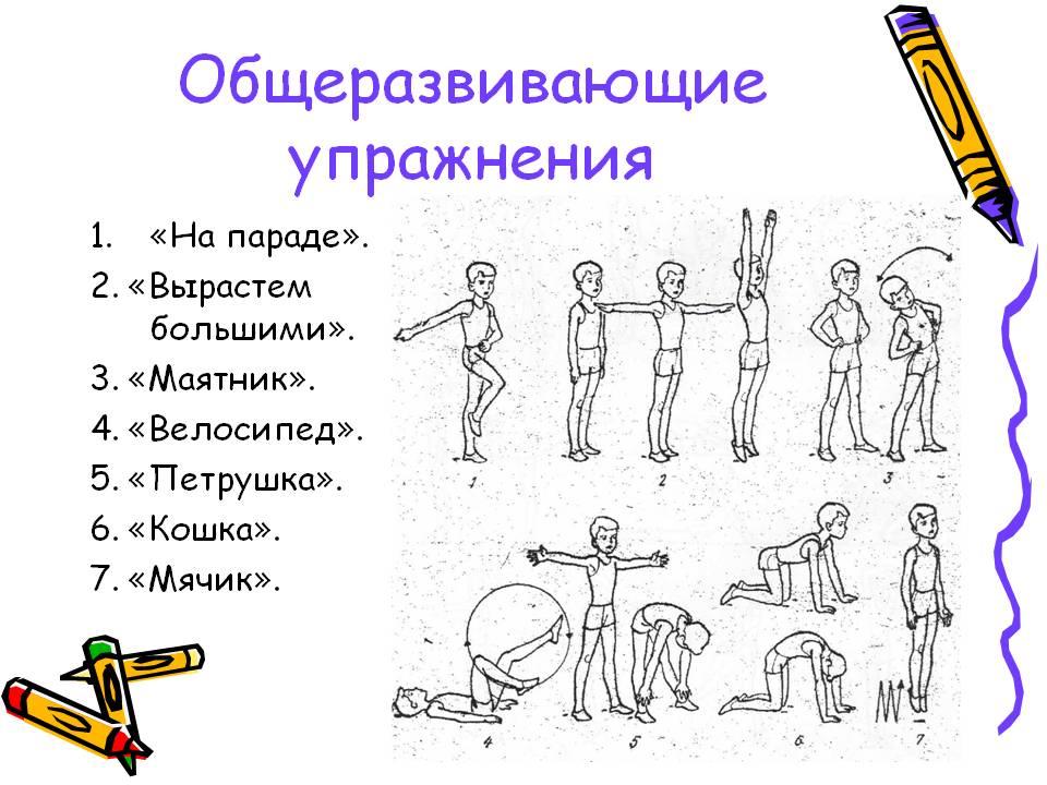 Общеразвивающие упражнения и их роль в физической культуре