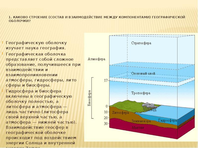 Что такое биосфера, каковы ее составные части и чем она отличается от других оболочек земли? :: syl.ru