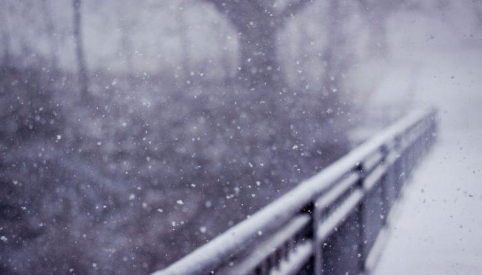 Снег — википедия. что такое снег