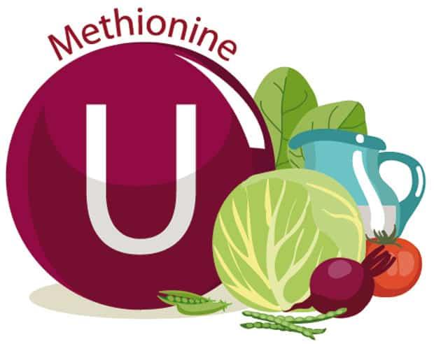 Для чего нужен метионин: показания к применению, где содержится