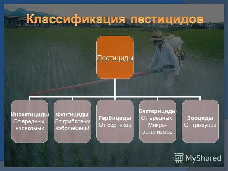 Хлорорганические соединения (хос) | справочник пестициды.ru