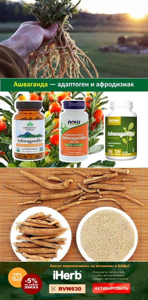 Ашваганда: лечебные свойства и противопоказания, отзывы