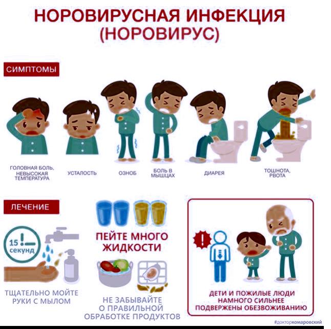 Норовирус: обнаружение симптомов, причины, лечение