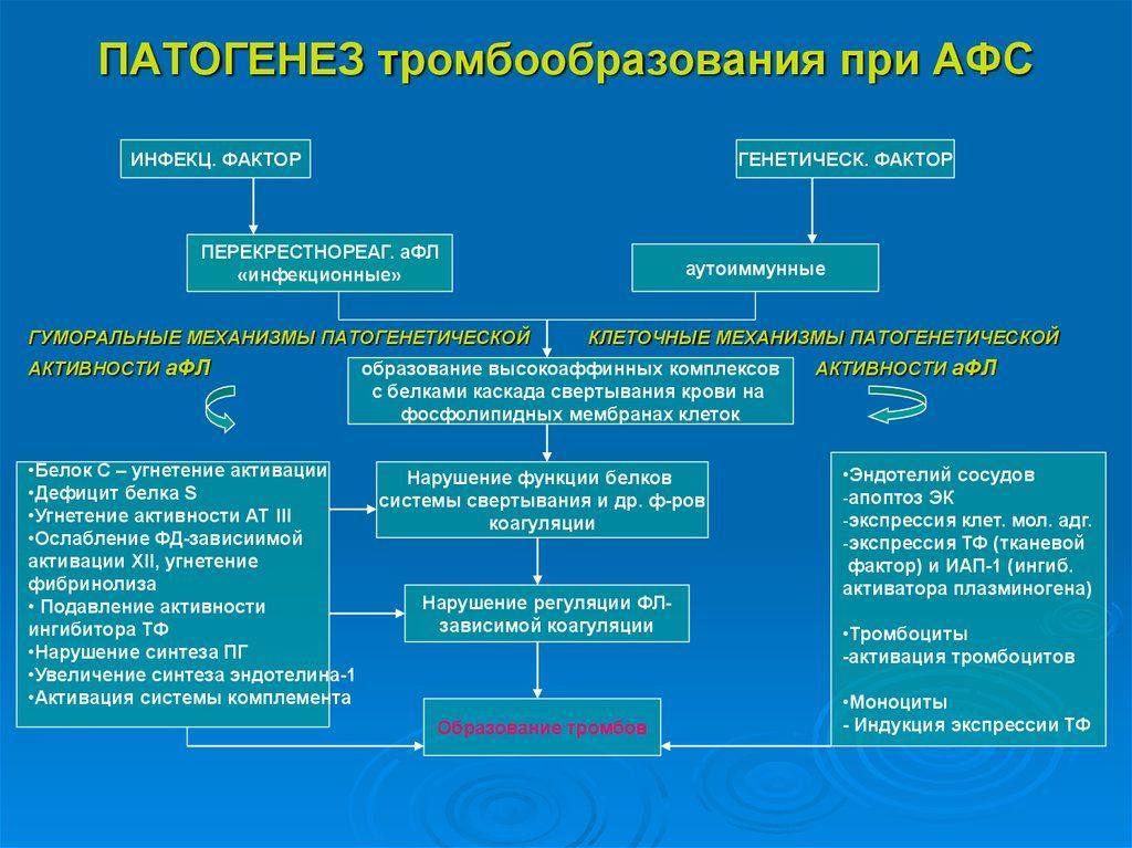 Антифосфолипидный синдром (афс)