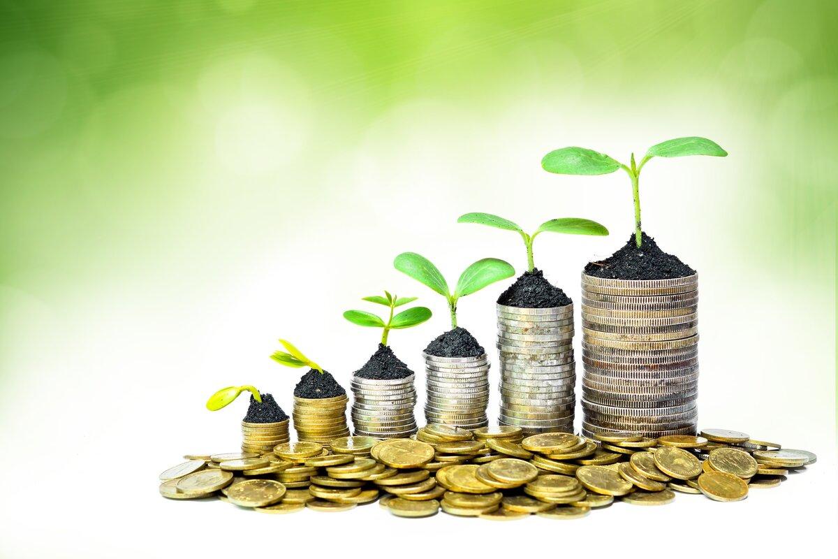 Валовая прибыль: понятие и ее расчет