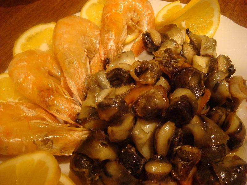 Рапаны: фото и описание моллюсков