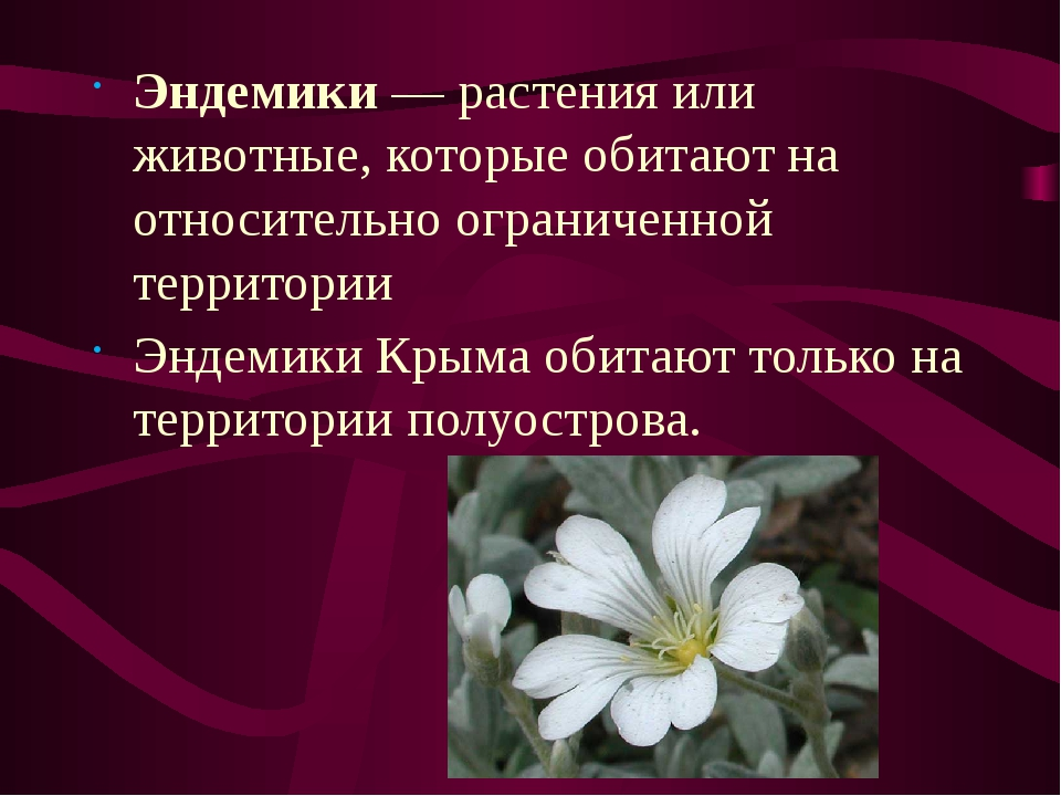 Эндемики армении