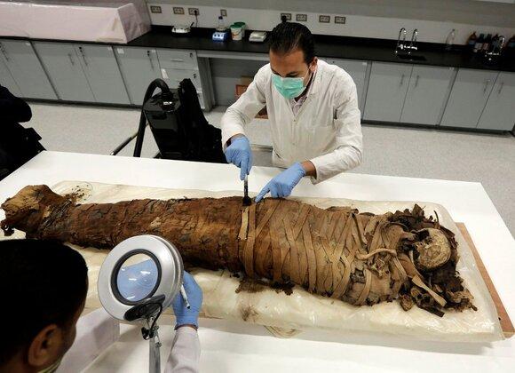 Что такое мумие её происхождение и полезные свойства
