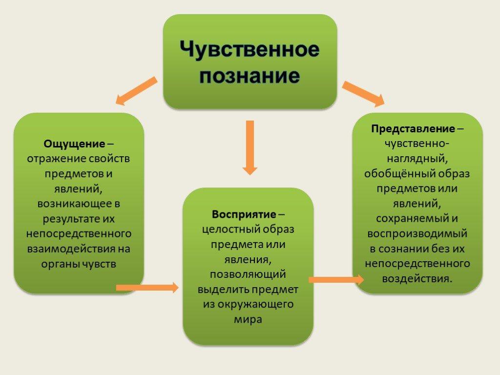 4.процесс познания. восприятие как чувственное познание мира