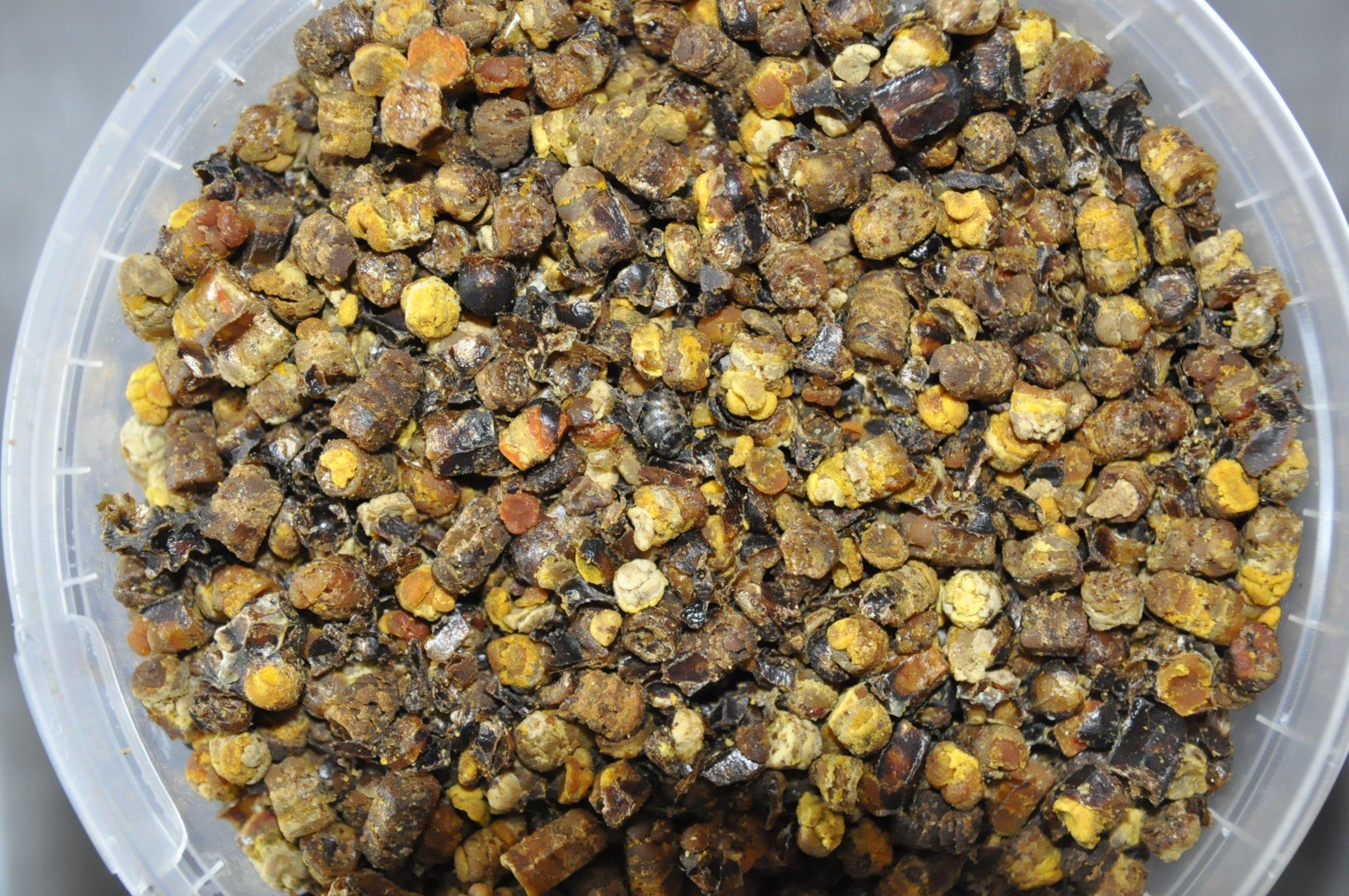 Лечение пчелиной пергой— польза и вред, как принимать, применение