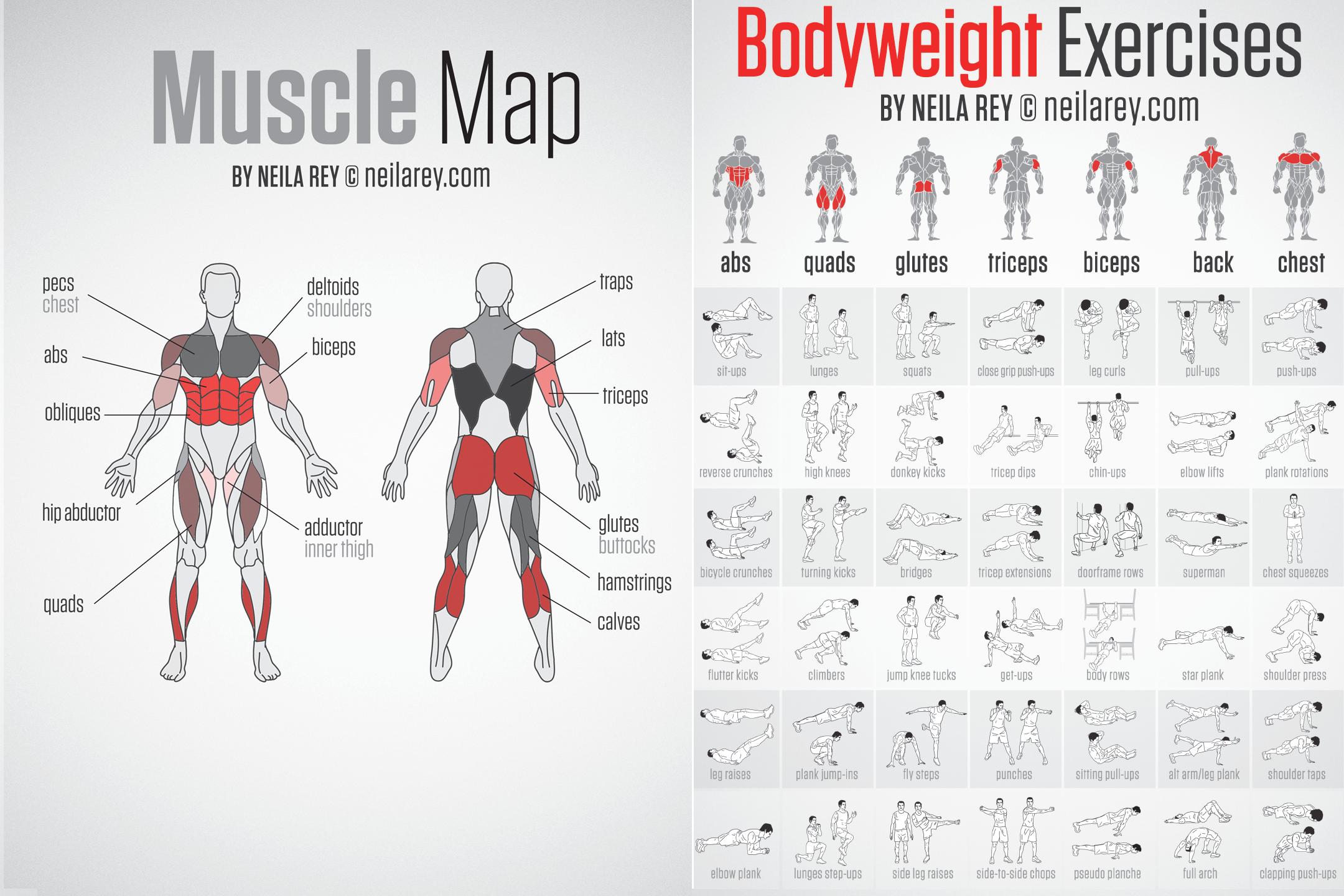 Мышцы кора: 5 лучших упражнений для мужчин и девушек
