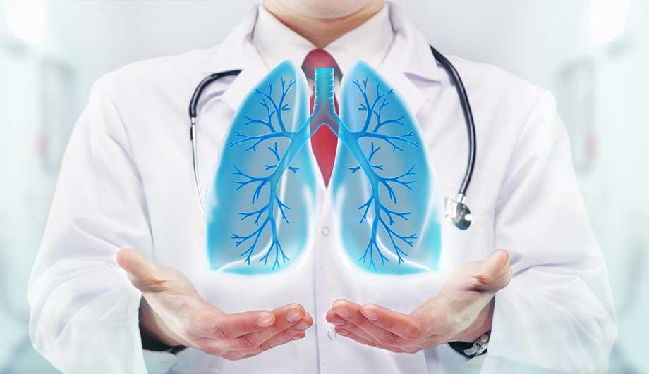 Профессия пульмонолог — что лечит, чем занимается, обязанности, требования, зарплата, как стать пульмонологом