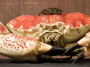 Краб - crab - qwe.wiki