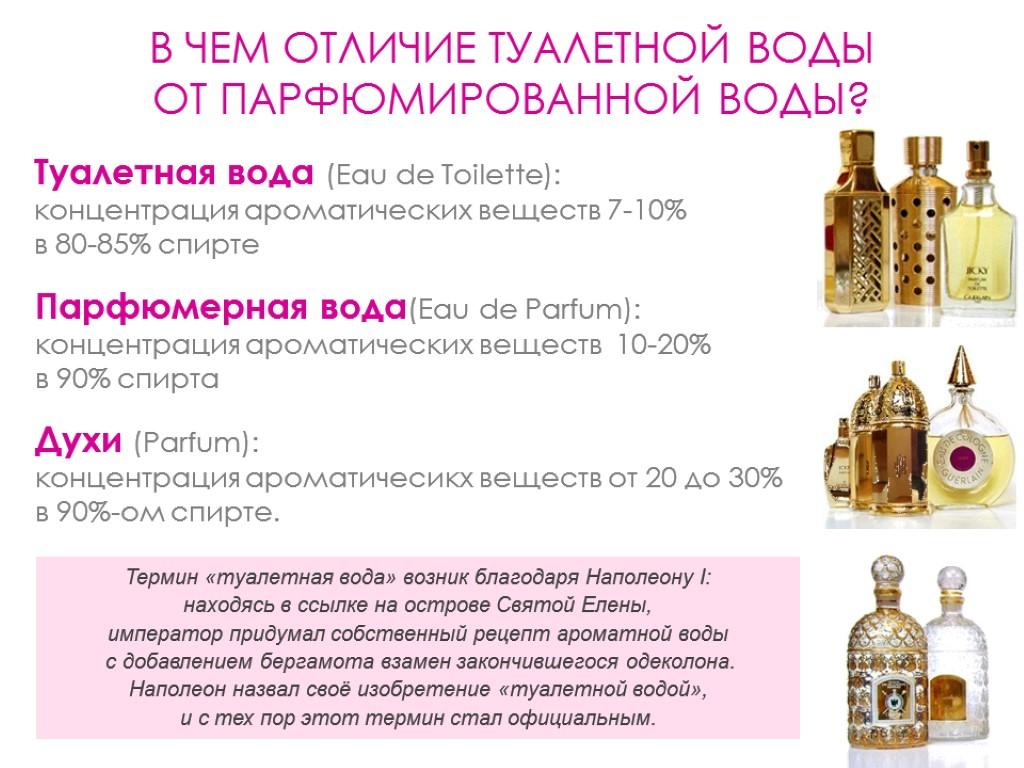 Список известных брендов женских духов: рейтинг знаменитых ароматов с фото