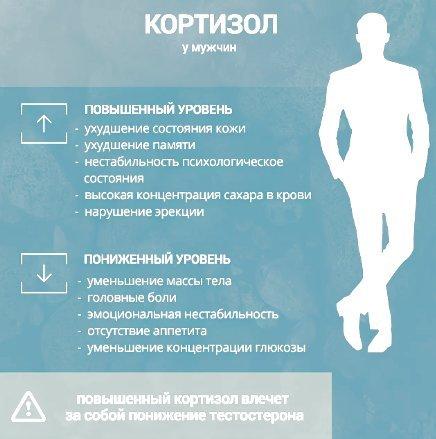Кортизол: что это такое и каково значение гормона в организме человека?