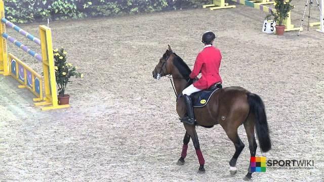 Конкур на лошадях: история, рекорды, препятствия и другое