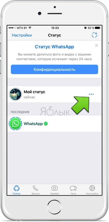 Статусы для whatsapp: как добавить и удалить
