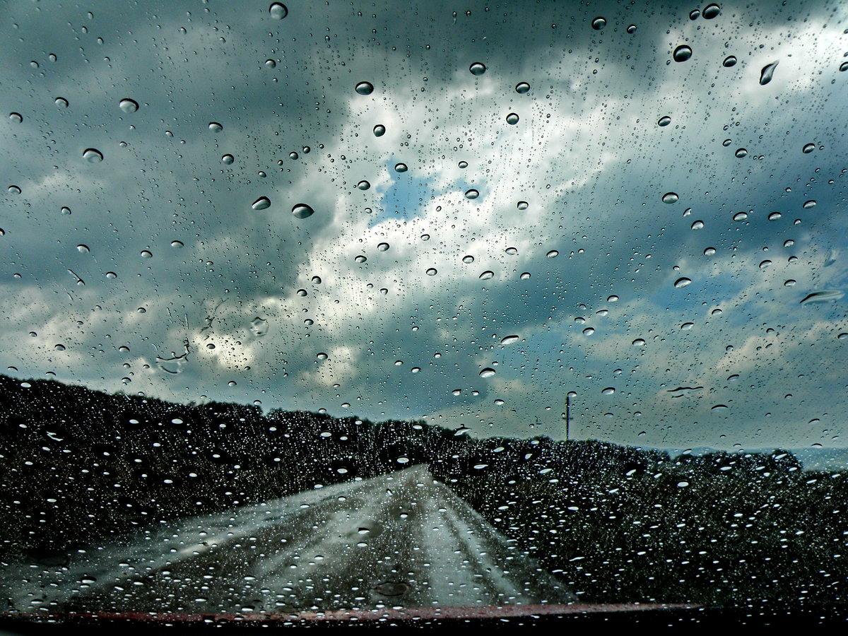 Дождь — википедия. что такое дождь