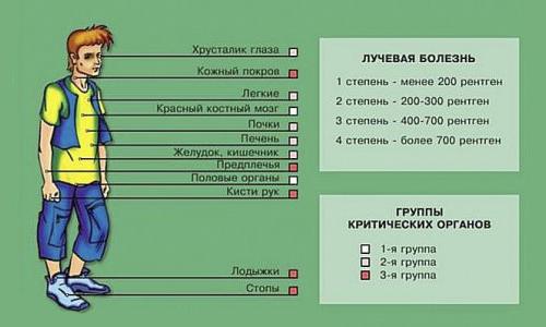 Насколько опасна доза радиации, получаемая при рентгене?   rvdku.ru