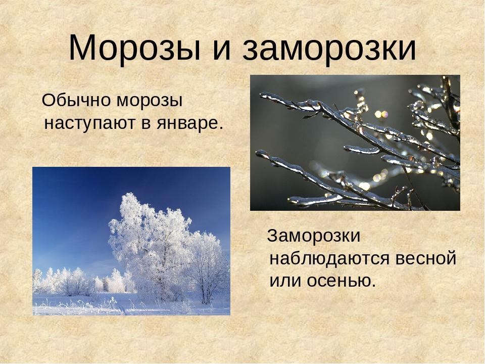 Заморозки: определение явления, типы, последствия, методы борьбы