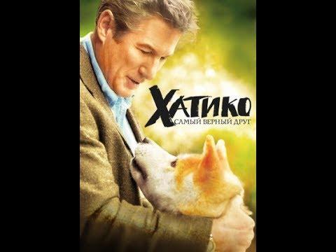 Хатико порода собаки из фильма про преданность