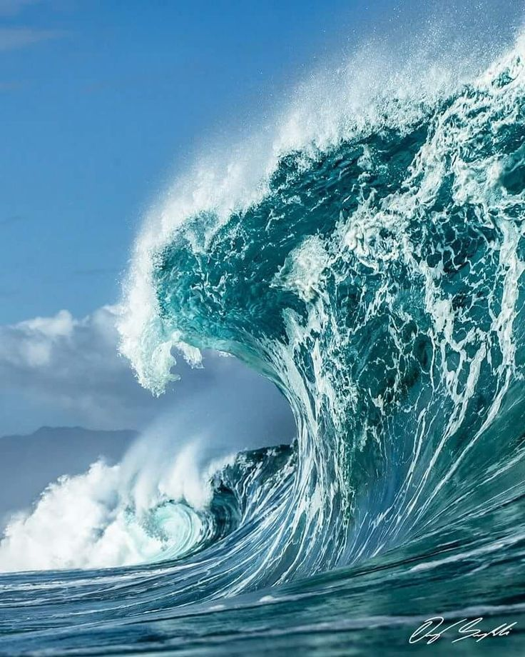 Iii. физиология и наука волны