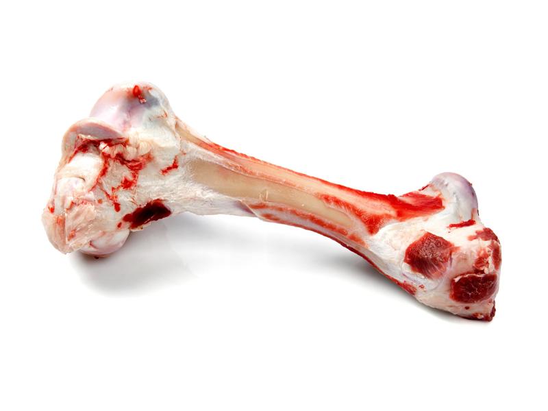 Что такое кость?