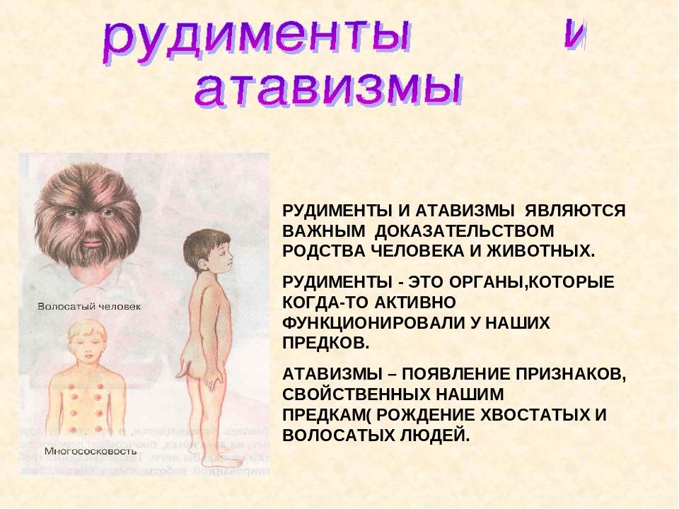 Атавизм — википедия с видео // wiki 2